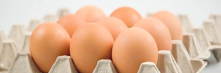 Risultati immagini per uova