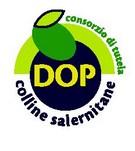 logo olio colline salernitane (logo proposto)